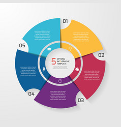 circle infographic 5 options vector image vector image