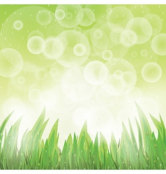 Green natural background vector image