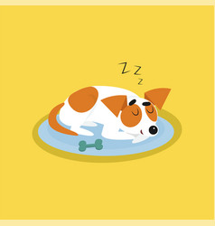 cute jack russell terrier sleeping on blue mat vector image vector image