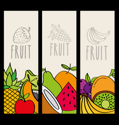 fresh and natural food nutrition fruit vertical vector image