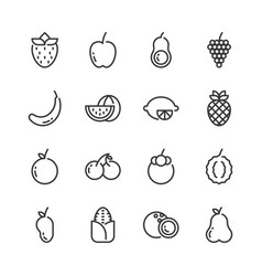 fruits simple outline icon set vector image