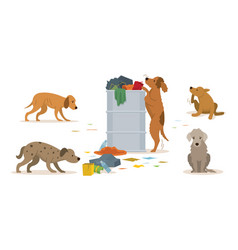 Group stray dogs rummage a trash can vector