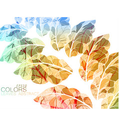 translucent leaves vector image vector image