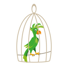 parrot in a cage vector image