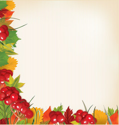 autumn background with viburnum leaves and grass vector image
