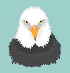 Bald eagle portrait vector