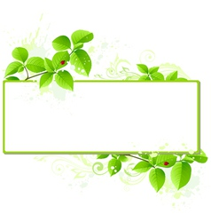 leaves and floral frame vector image