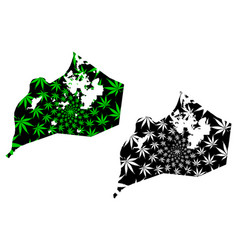 Louisville city - map is designed cannabis leaf vector