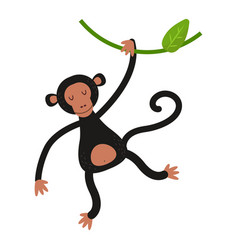 Macaque monkey rare animal vector