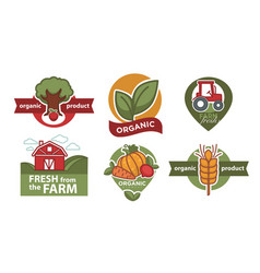 organic product isolated icons farm food and vector image
