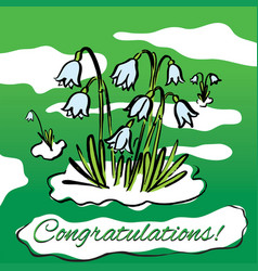 Spring snowdrops hand drawn vector