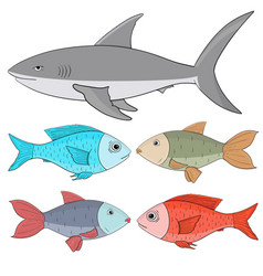 fishes collection of colored fishes and shark vector image