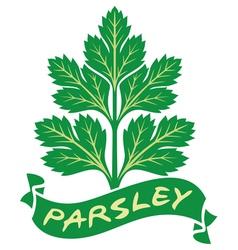 parsley label vector image