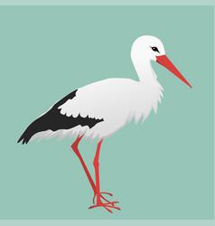 An of a stork vector