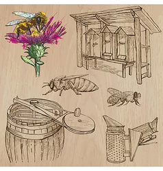 Bees beekeeping and honey - hand drawn pack 6 vector