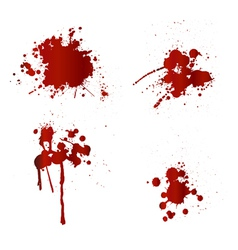 Blood splatters vector image