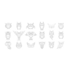 cute owls collection coloring page for your vector image