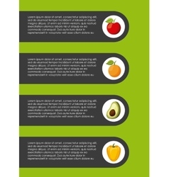 dieting infographic presentation vector image