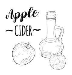 Hand drawn black and white green apple cider vector