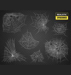 Realistic spiderweb transparent set vector