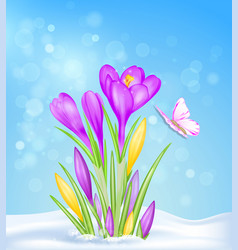 spring flowers in the snow vector image
