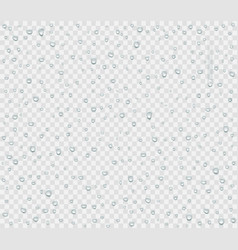 water droplets of rain or spray vector image