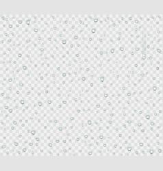 water droplets rain or spray vector image