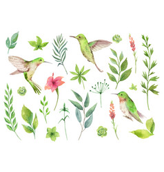 Watercolor hand painted set with green vector