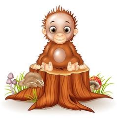 Cartoon cute a baby monkey sitting on tree stump vector image vector image