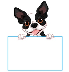 Boston terrier sign vector image