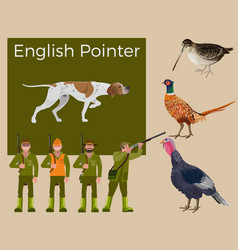 english pointer set vector image