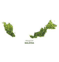 Green leaf map of malaysia vector