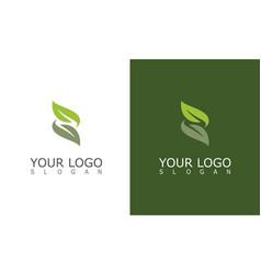 leaf letter z logo vector image