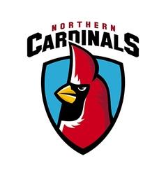 Northern cardinal sport logo angry bird mascot vector