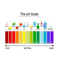 ph scale universal indicator ph test strips vector image