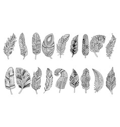 set black hand drawn feathers with doodle vector image