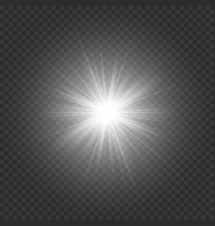 silvery bright star vector image