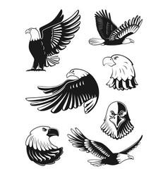 monochrome set of eagles vector image