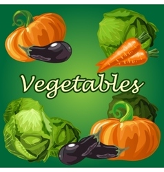 Vegetable set cabbage eggplant carrot pumpkin vector image vector image