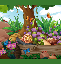 Background scene with snails and butterflies vector