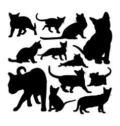 cute burmese cat animal silhouettes vector image