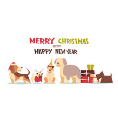 cute dogs in santa hats isolated on white with vector image