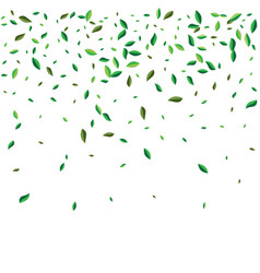 green flying or falling off leaves vector image