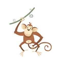 jungle wild monkey colorful safari circus vector image