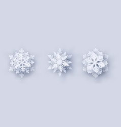 set of 3 paper cut snowflakes with shadow vector image