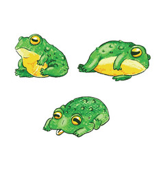 set of cute cartoon frogs handdrawn vector image