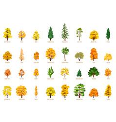 Big cartoon set with autumn trees vector