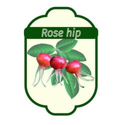 rose hip label vector image