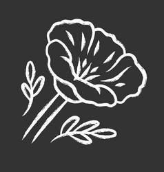 california poppy chalk icon papaver rhoeas corn vector image