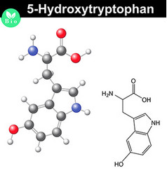 Hydroxytryptophan chemical structure vector